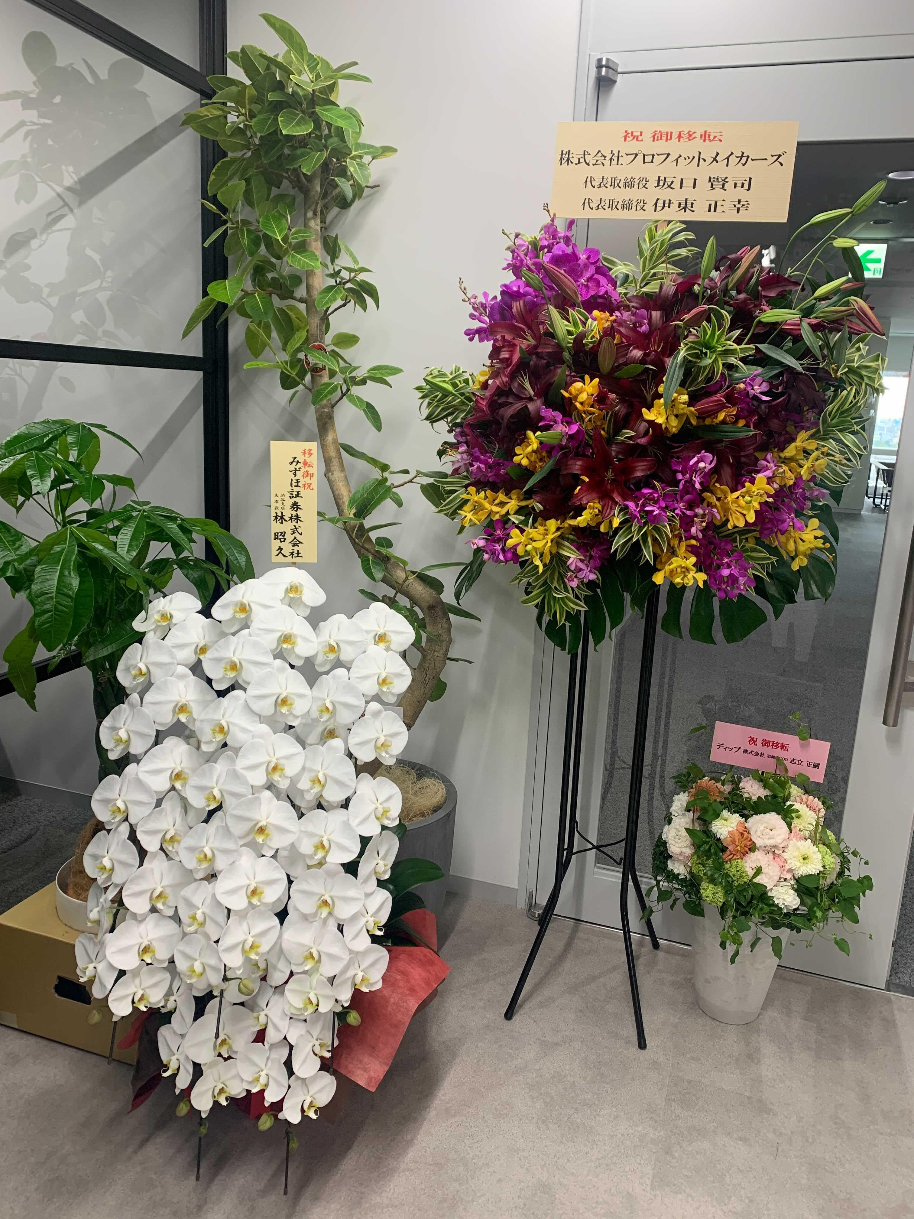 移転祝い お花